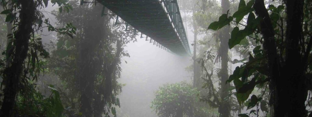 Forêt de nuages au Costa-Rica