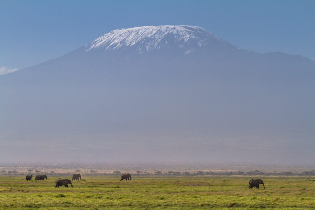 Vue du Kilimandjaro depuis le Parc national d'Amboseli Photo Benh Lieu Song