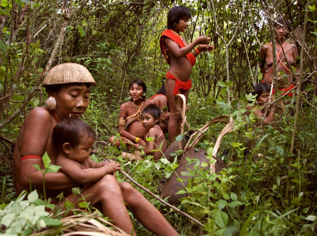 Des femmes et des enfants yanomamis se reposent dans un jardin forestier, au Brésil. Les Yanomami cultivent environ 60 plantes dans ces jardins, qui représentent 80 % de leur alimentation. © Fiona Watson/ Survival International