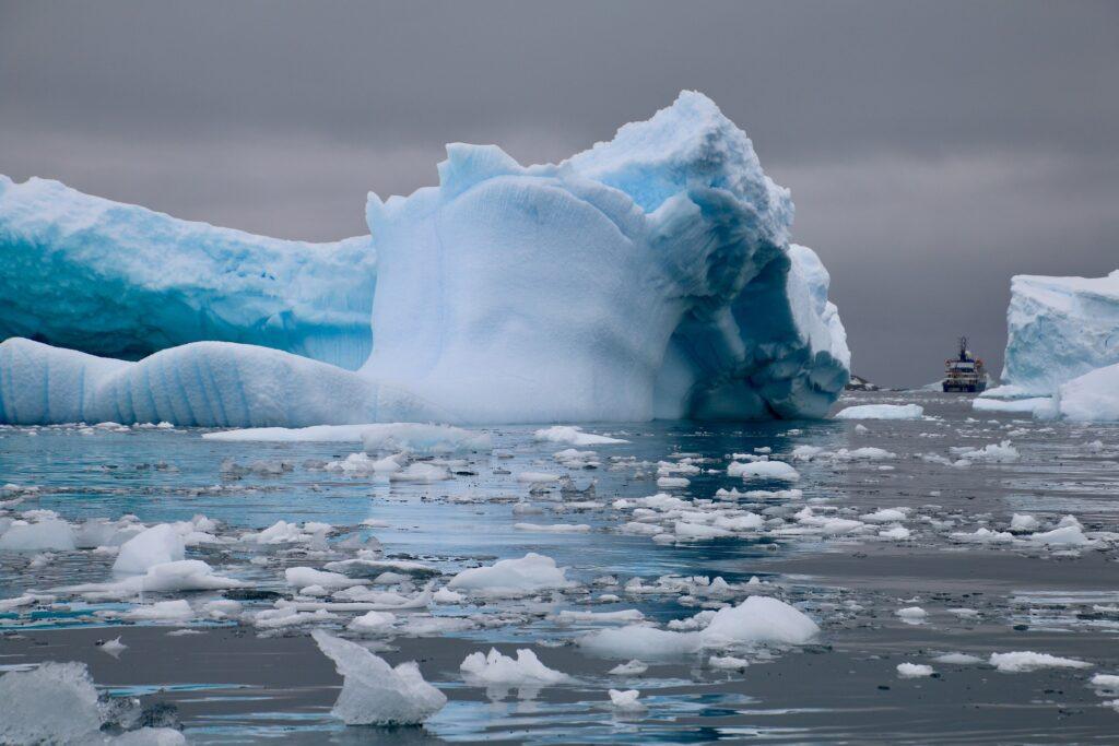 Antarctique, Cierva Cove ©SarahNic