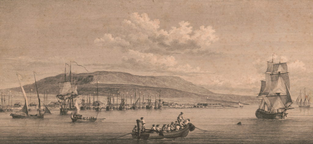 Ile de Saint-Domingue en 1760 (première producteur mondial de canne à sucre aux XVIIIe), Pierre Ozane