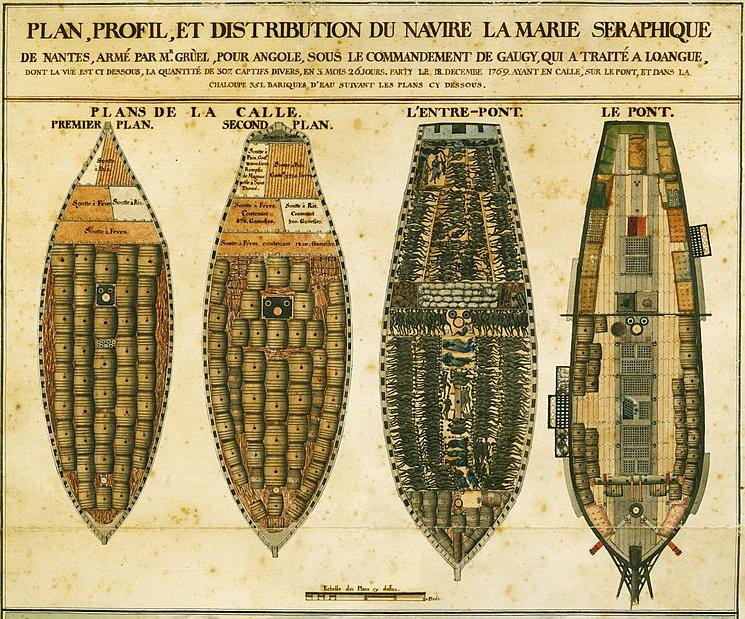 Plan profil et distribution du navire La Marie Séraphique au départ de Nantes