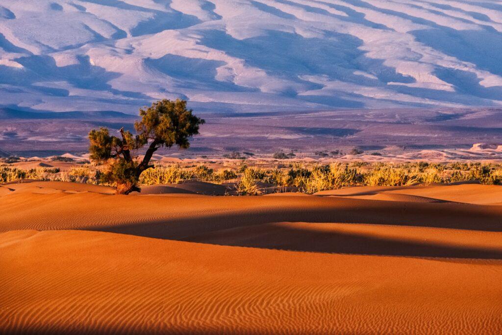 Le désert avance inexorablement